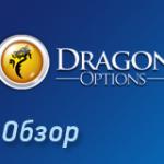 Обзор dragonoptions